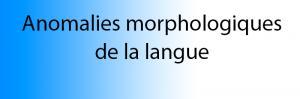 anomalies morphologiques langue